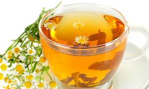 Trà hoa cúc làm từ giống hoa nào?