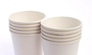 6 mẫu cốc, đĩa giấy nhựa thôi nhiễm kim loại