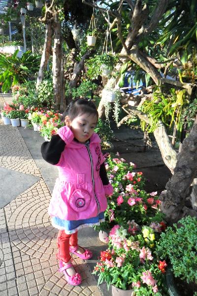 love-flower-1390382770-7876-1390466626.j