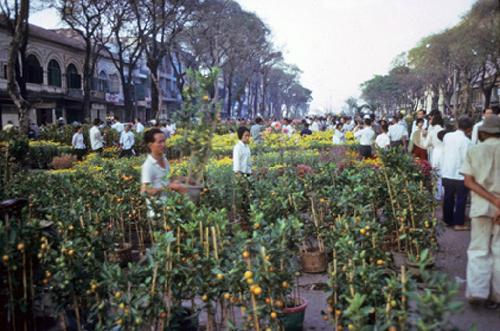 Chợ hoa ngày Tết.