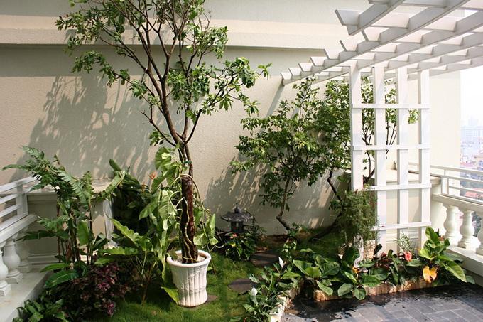 Căn hộ có sân vườn trên nóc chung cư cao tầng
