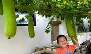 3 vườn rau Việt đáng ngưỡng mộ ở nước ngoài
