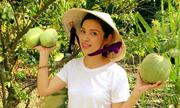 Mùa cây sai quả trong vườn nhà Việt Trinh