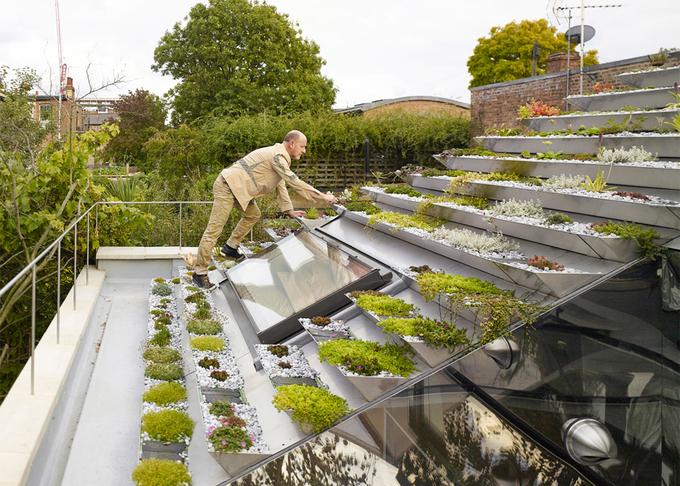 Nhà 2 tầng làm vườn bậc thang trên mái