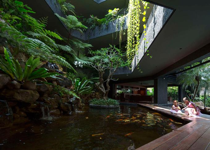 'Vườn bách thảo' trong ngôi nhà 4 tầng ở Singapore