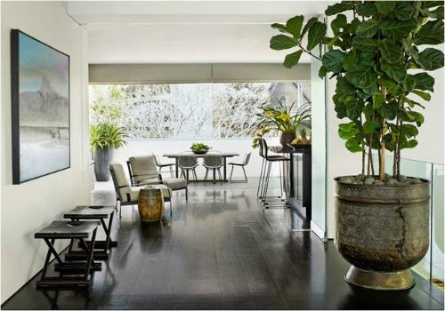 Cây xanhthanh lọc khí nóng, giảm nhiệt độ trong nhà.