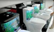 Các thiết bị vệ sinh kỳ quặc nhất thế giới