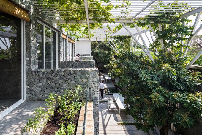 Công viên thu nhỏ trồng toàn rau của chủ nhà Sài Gòn