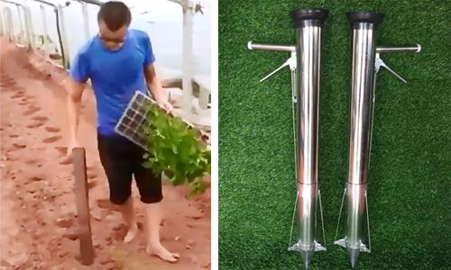 Trồng cây không cần đào đất chỉ bằng một chiếc ống