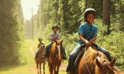 Cha mẹ giàu chi bộn tiền cho con vào trại hè 'sống khổ'