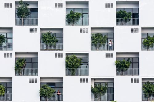 Các khối tường trắng xen kẽ với ô trồng cây xanh. Ảnh: Hoàng Lê.