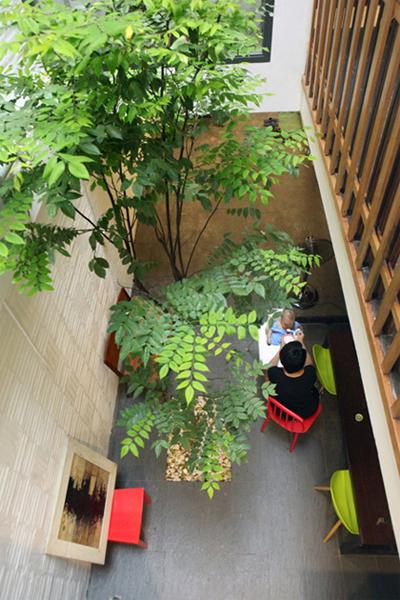 Các gia chủ có thể tận dụng diện tích giếng trời để bố trí chỗ ngồi tiếp khách, bàn ăn, góc vườn nhỏ. Ảnh minh họa: Lê Hoàng.