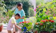 4.000 video kêu gọi bảo vệ điều tốt từ các gia đình