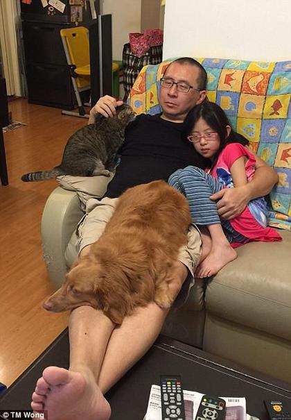 Anh Won cho biết rất vui khi albumđược quan tâm, nhưng sẽ tốt hơn nếu mọi ngườibiết ý nghĩa đằng sau những bức ảnh này. Nhiều gia đình ở Trung Quốc sẽ từ bỏ những con vật nuôi khi người phụ nữ trong nhà mang thai, vì lông hoặc phân của chúng sẽ gây ảnh hưởng đến sức khoẻ của mẹ và trẻ sơ sinh.