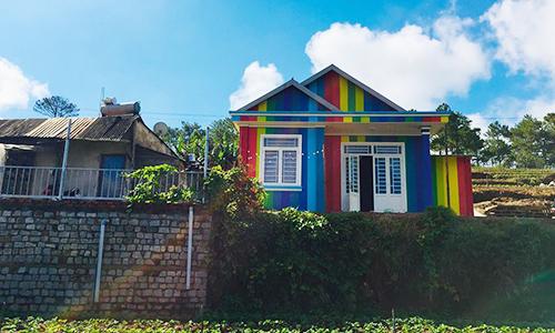 Không cần đánh số, ngôi nhà do anh Sơn thuê vẫn có thể tìm thấy dễ dàng nhờ màu sắc nổi bật giữa ruộng vườn.