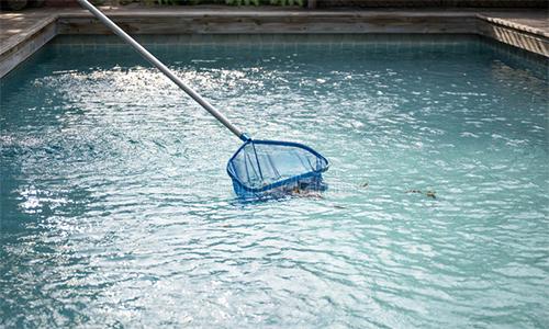 Bể bơi là khu vực cần vệ sinh thường xuyên, nhất là khi bố trí ở nơi có nhiều cây. Ảnh minh họa: DST.