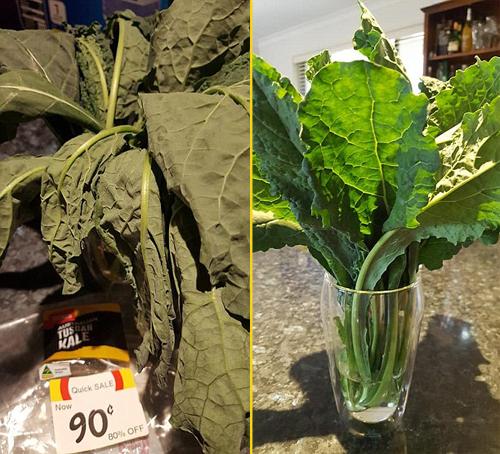 Hình ảnh cây rau héo rũ khi chị Renae mua ở siêu thị và tươi xanh sau một đêm được ngâm nước. Ảnh: Facebook.