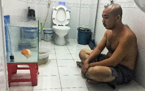 Chàng trai mê cá đến độ thường bắt cá cho vào bể trong toilet (toilet gia đình không sử dụng) ngồi hàng giờ ngắm. Ảnh: NVCC.