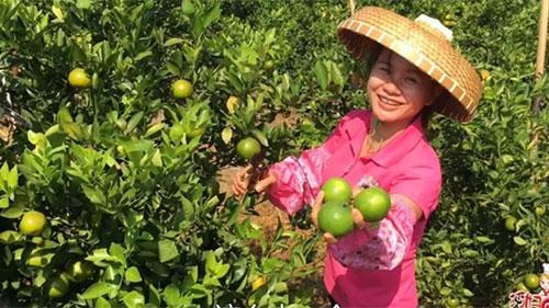 ChịGan Youqin ban đầu chỉ chăm con và làm vườn ở nhà, trước khi trở nên nổi tiếng trên mạng. Ảnh: Scmp.