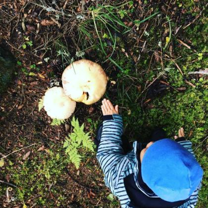 Trong khi nhiều bạn khác thích leo cây, bắt ốc sên, bé Ốc thích hái nấm khi vào lớp học trong rừng. Ảnh: NVCC.