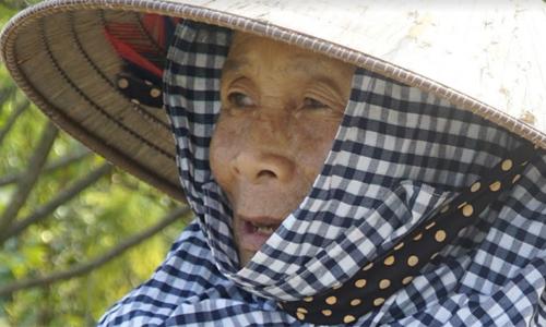 Ở tuổi 70, bà Hiền đã mắt mờ, chân đi khó nhọc,nhưng vẫn đi cắt cỏ thuê. Ảnh: Trọng Nghĩa.