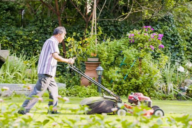 Người đàn ông biến mảnh đất hoang thành khu vườn riêng 'đẹp nhất Trung Quốc'