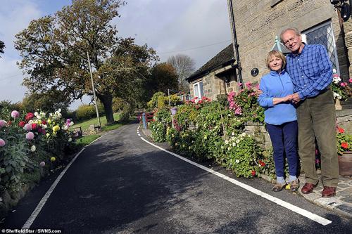 Vợ chồng ông Brian đã bỏ ra khoảng 1.000 bảng Anh trồng hoa trong khoảng 5 năm qua.