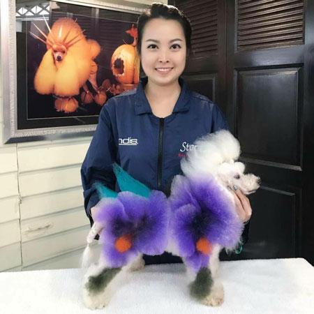 Lan nghỉ việc, bắt đầu đi học về tỉa lông, làm đẹp cho chó ở Thái Lan từ năm 2013.