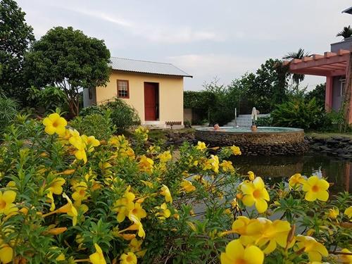 KTS Vũ Quang Định (Công ty Kiến trúc ASPACE) cho biết cô Tâmmong muốn việc thiết kế sẽ làm tổng thể, còn xây dựng sẽ đầu tư theo giai đoạn để chuẩn bị tài chính dần dần. Cô cũng muốnchính tay mình thi công theo tư vấn thiết kế ban đầu.