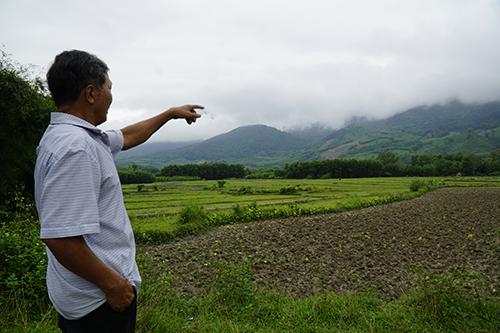Ông Trần Công Lý chỉ ngọn núi cách đây vài chục năm gần nửa dân làng làm giàu trên đó. Ảnh: Trọng Nghĩa.