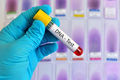Anh chàng mua bộ thử ADN tại nhà làm quà tặng cho cả gia đình. Ảnh: criticschronicle