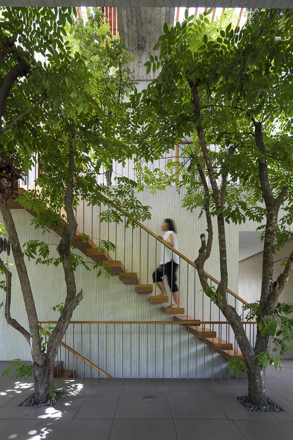 'Khu rừng nhiệt đới' trong ngôi nhà Sài Gòn