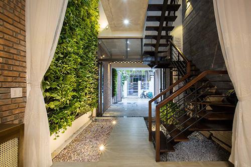 Khu vườn thẳng đứng nằm trong nhà. Ảnh: Tô Hữu Dũng.
