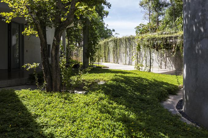 Gia chủ Nghệ An xây nhà hình chữ Y vì vướng cây