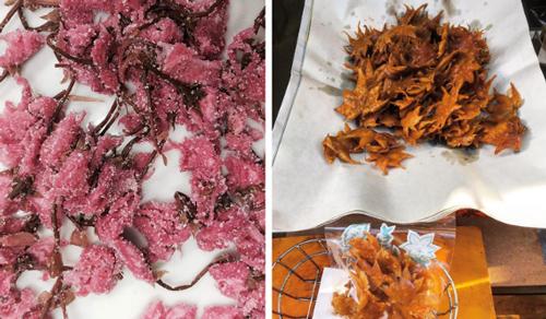 Đồ ăn từ hoa, lá đặc trưng theo mùa: Ở Nhật, vào mùa thu người ta ăn lá phong chiên lên.  Mùa xuân, họ ăn hoa anh đào ướp đường. Họ ăn hoa sen quanh năm.,..