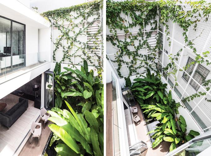 Phòng khách thông hai đầu ra vườn ở biệt thự Sài Gòn