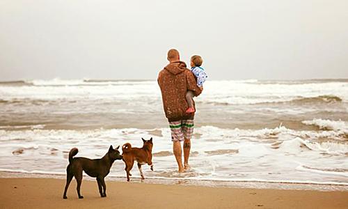 Gia đình rời Hà Nội chỉ trong chục ngày để sống với gió cát Đà Nẵng