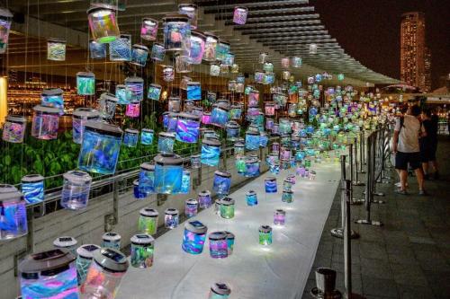 Tác phẩm nghệ thuật làm từ 600 hộp nhựa tại Hà Nội - 2