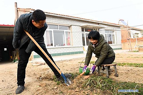 Liu Hai và Li Meiwwen là một cặp vợ chồng đang sinh sống tại thị trấn ở khu tự trị Nội Mông.Năm 1997, Liu Hai, lúc 25 tuổi bị điện giật tại nơi làm việc, dẫn đến phải cắt cụt hai tay. Chị Li Meiwen ở Quảng Tây bị mất chân năm 13 tuổi do tai nạn. Đối mặt với hiện thực tàn khốc, Liu Hai đã học cách tự ăn uống, phục vụ bản thân bằng đôi chân. Còn Li Meiwen học cách đi bộ với hai chiếc ghế.