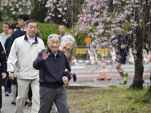 Nhật hoàng Akihito và Hoàng hậu Michiko cùng nhau ngắm hoa anh đào. Ảnh: Japantoday.