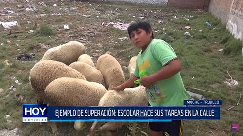 Gia đình Victor là một trường hợp đặc biệt khó khăn không hiếm gặp ở Peru. Ảnh: HOY.