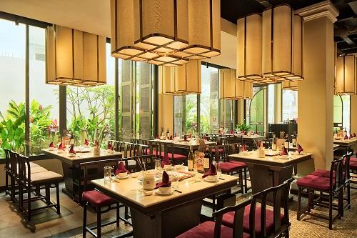 Không gian ẩm thực thượng hạng Ashima là điểm đến hoàn hảo cho phụ nữ hiện đại tìm kiếm vẻ đẹp của nghệ thuật thưởng thức