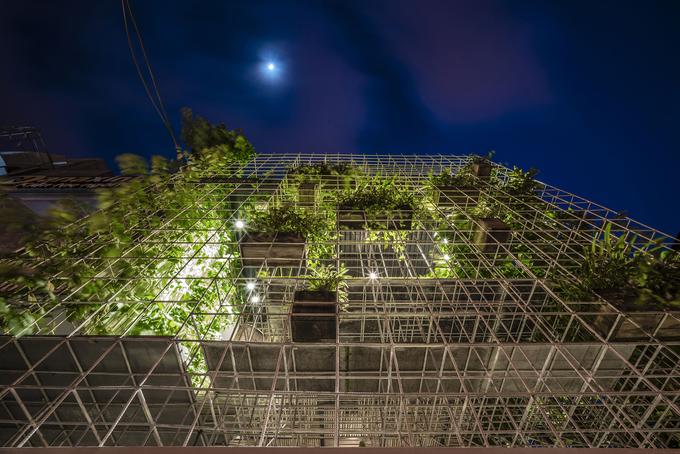 Xưởng gỗ cũ hóa thành ngôi nhà xanh mát ở Đà Nẵng