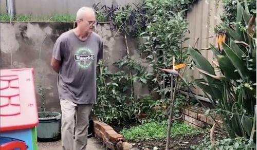 Peter bất ngờ khi mẹ vợ biến vườn hoa thành vườn rau. Ảnh: