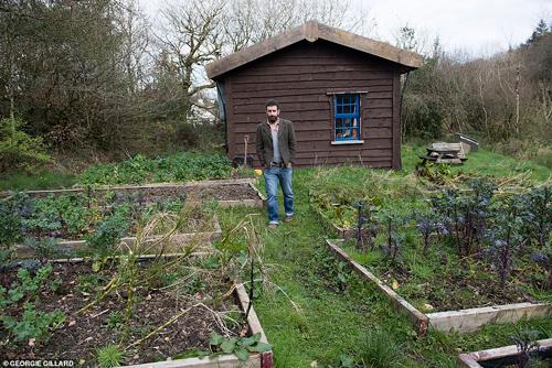 Mark thăm thú vườn rau tự trồng.