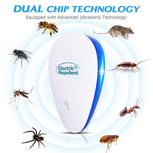 Gợi ý 5 sản phẩm chống muỗi hiệu quả - 1