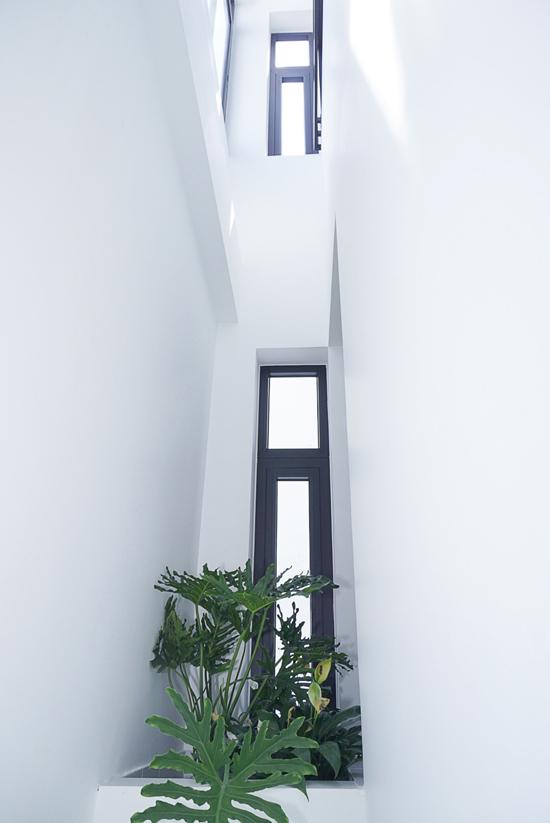 Nhà hẻm nhỏ Sài Gòn cắt 1/3 diện tích làm giếng trời
