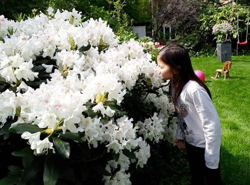 Hai con gái của chị rất thích chơi ở khu vườn, và thường phụ giúp bố mẹ chăm sóc các cây hoa.