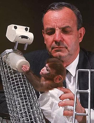 Nhà tâm lý học Harlow với thí nghiệm trên khỉ từng bị nhân loại lên án, nhưng cũng không thể phủ nhận giá trị thí nghiệm mang lại.