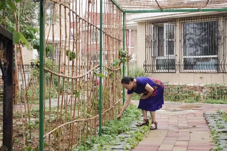 Bà cùng với những người bạn cũng trồng rau, chăm sóc cây cỏ để khuây khỏa mỗi ngày.